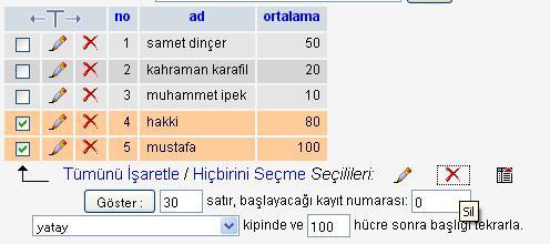 fazla_kayit_sil